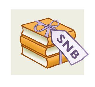 SNB logo large